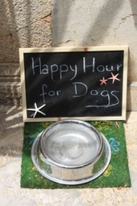 food-bowl-fressnapf-metal-bowl-dog-food-dog-board